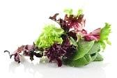 ensalada de flores surtidas