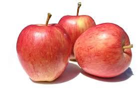 manzana royal gala importacion