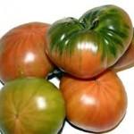 tomate ensalada 2