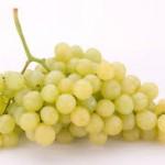 uva aledo