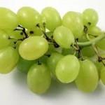 uva italiana